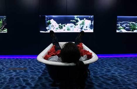 Nessa sala é proibido utilizar o celular ou laptop. A única atividade possivel aqui é descansar e olhar os peixes tropicais nos aquários da parede.