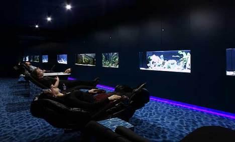 O salão das águas é uma zona de paz e relaxamento do edificio. Existem camas massageadoras e a iluminação é minima. É o lugar perfeito pra tirar uma soneca ou descansar antes de uma reunião.